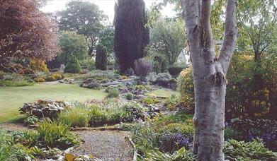 Fox Lodge Garden