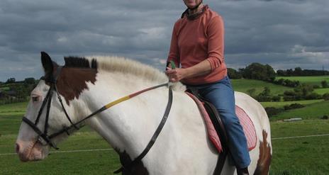 Laurel View Equestrian Centre