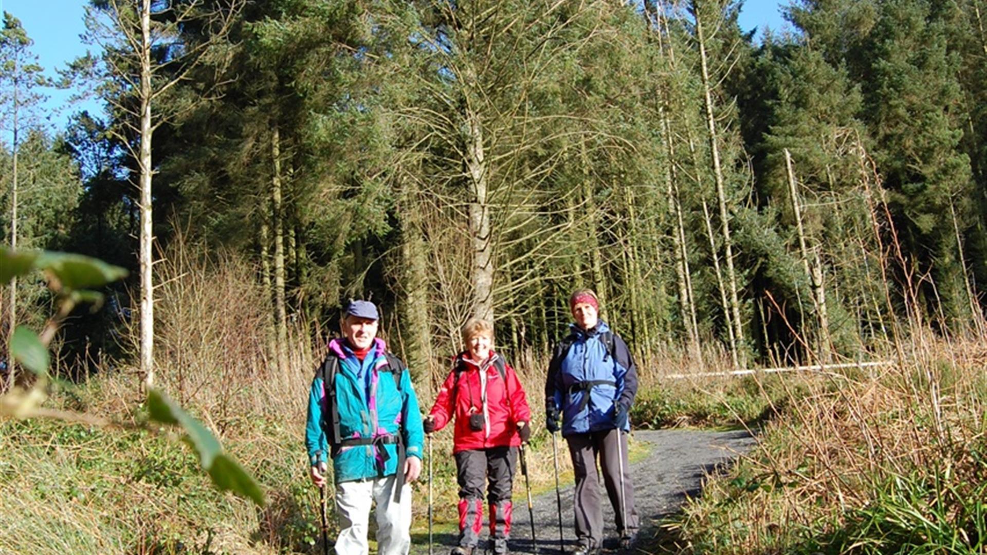 Gortin Forest Ladies View