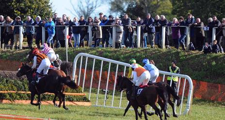 Moira Point-to-Point Races