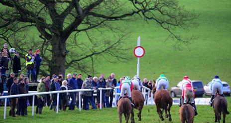 Toomebridge Point-to-Point Races