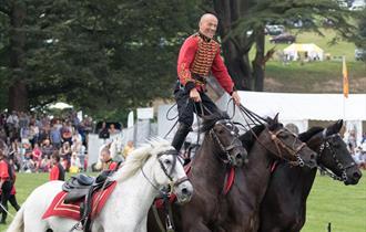 Festival of the Horse at Belvoir Castle
