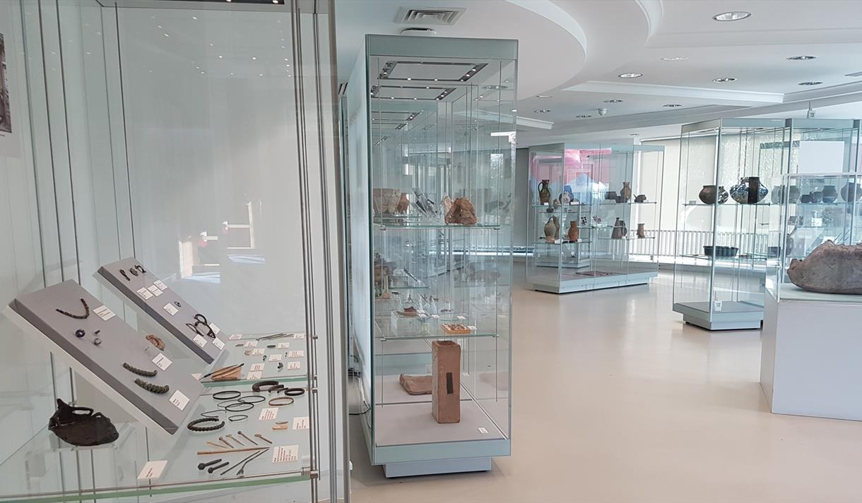 Behind the Scenes of the Museum