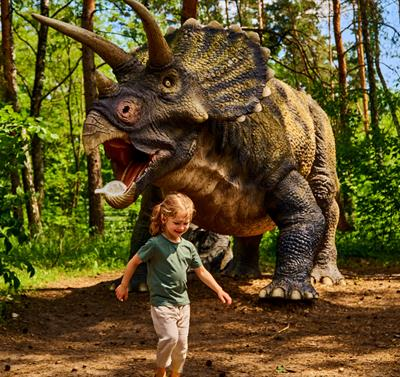 Dino Kingdom