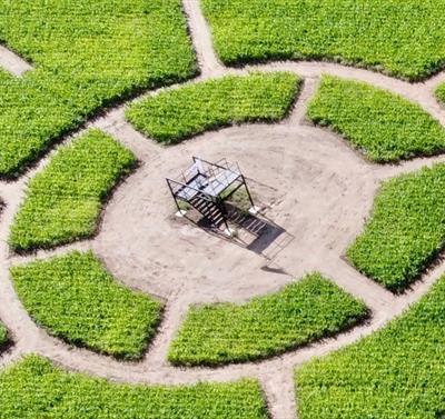 Notts Maze