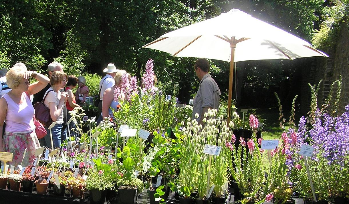Plant Hunters Fair at Southwell Minster