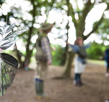 SUMMER SCHOOL: Draw From Nature - Art in the Park Outdoor Exhibition