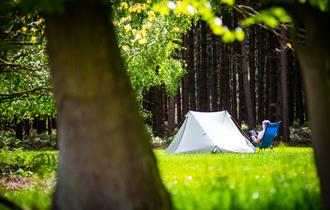 Sherwood Pines Camping in the Forest Site, Nottinghamshire