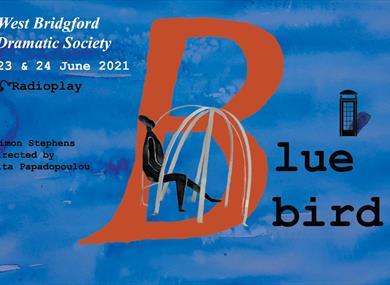Bluebird by Simon Stephens