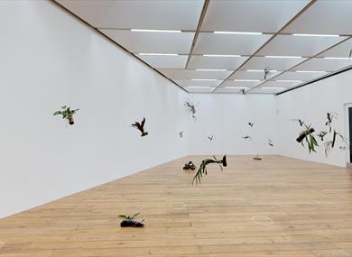 Daniel Steegmann Mangrané - Virtual Exhibition at Nottingham Contemporary