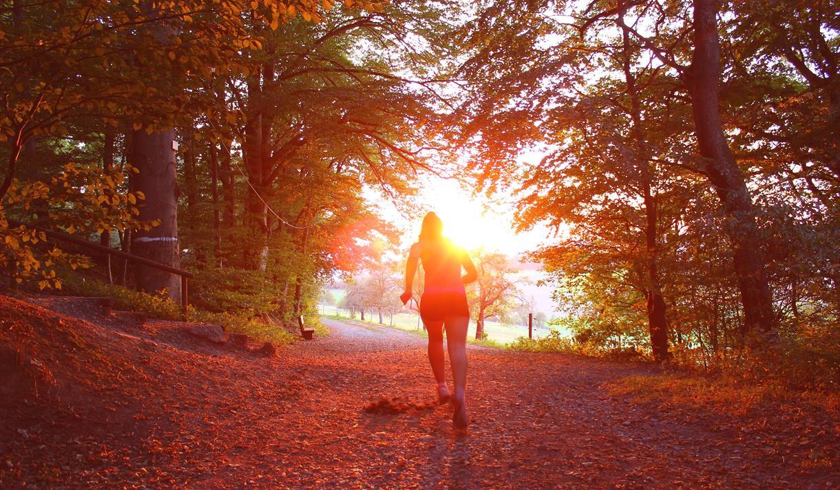 Runner forest recreation ground