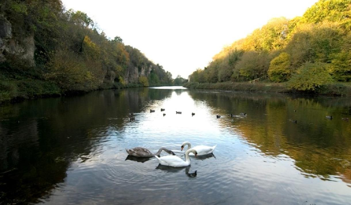 Creswell Crags, Nottinghamshire