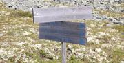 Flere muligheter i Renåfjellet, foto Ine Gulbæk