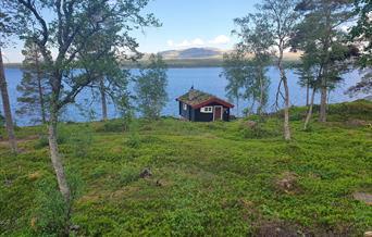 Nøsterhuset, Rendalen kommuneskoger