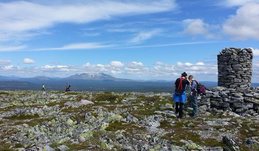 På toppen av Renåfjellet ved Vardebua, foto Ine Gulbæk