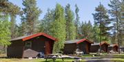 Koppang Camping