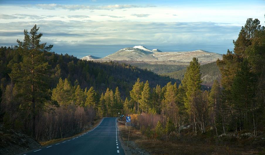 National Turistveg Rondane