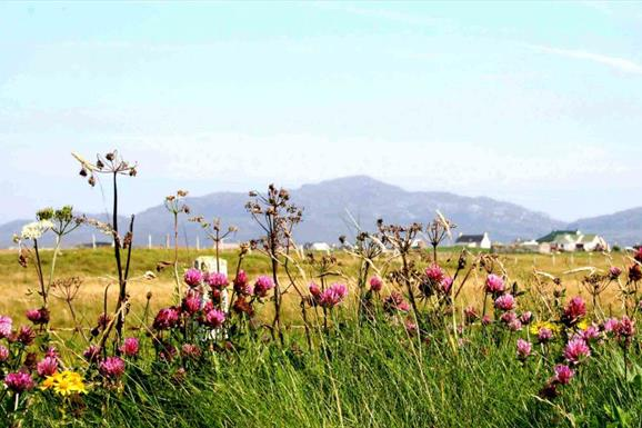 Beach and Machair at Kilpheder