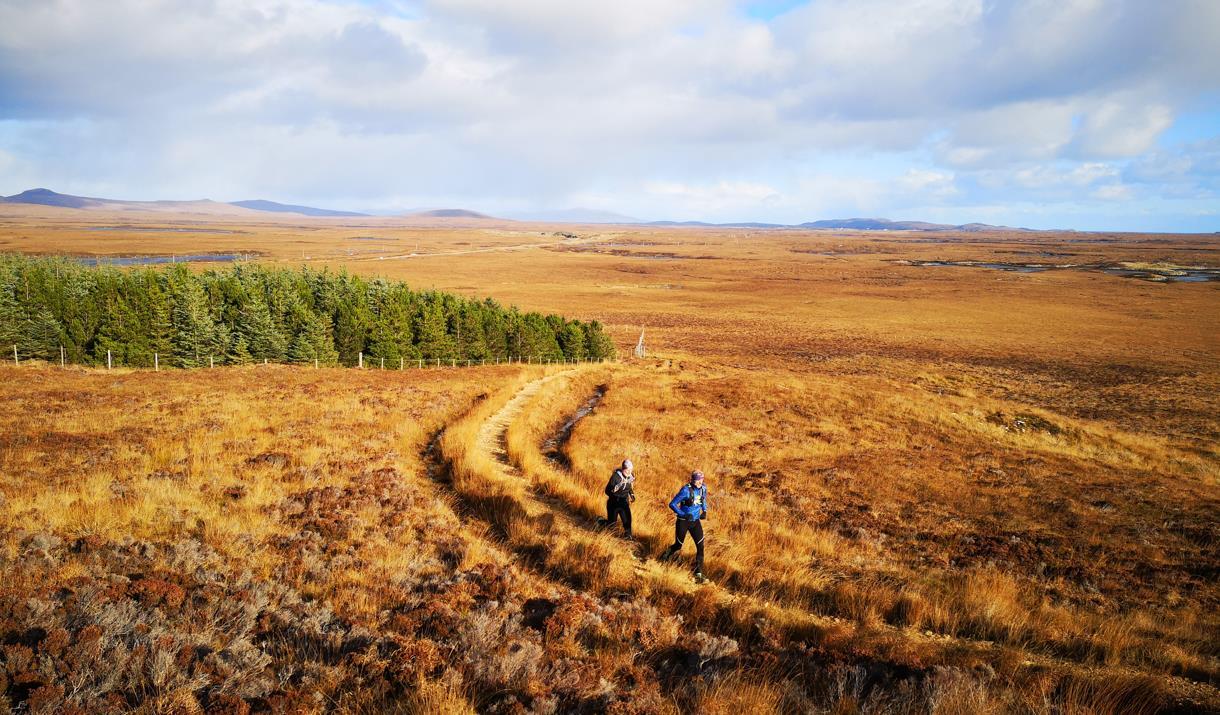 North Uist: Langass Woods runners