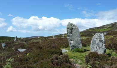 Piobull Fhinn Stone Circle