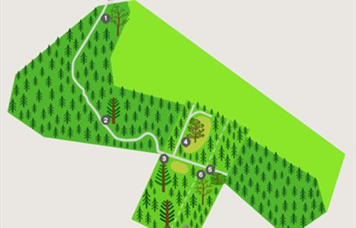 Langass Woodland