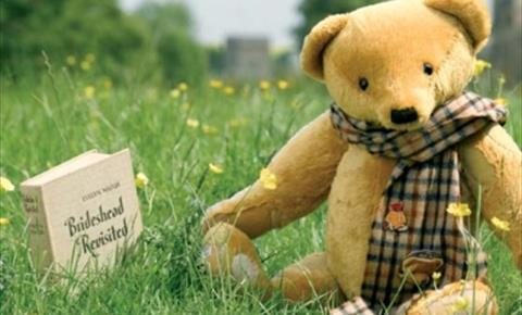 Aloysius from Brideshead Revisited, at Teddy Bears of Witney