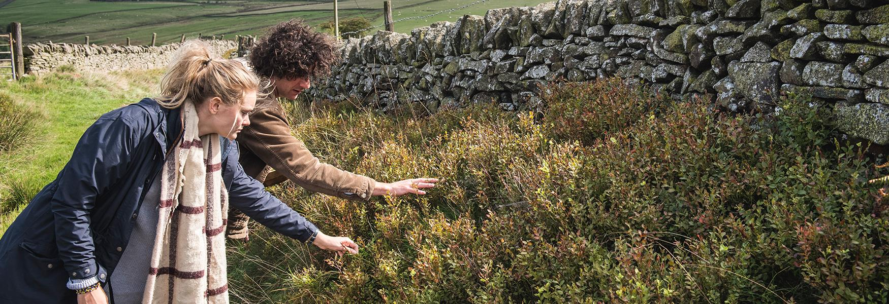 Go foraging for your own bespoke gin!