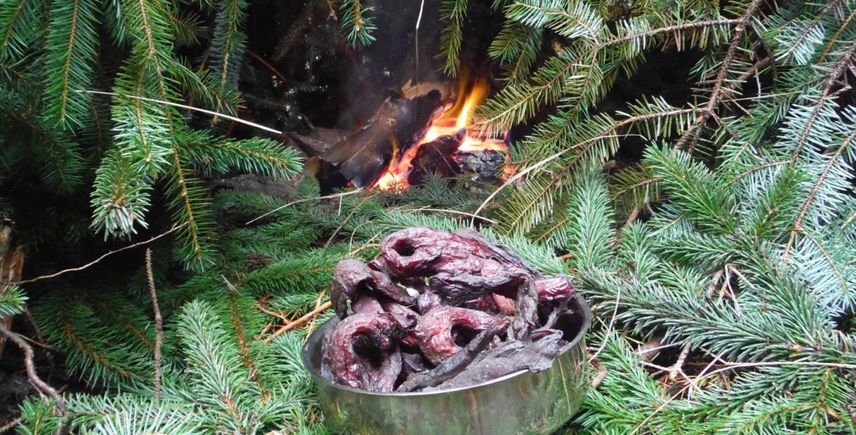 Survival School CQ Level 2 Bushcraft, Survival and Wilderness Living weekend training course