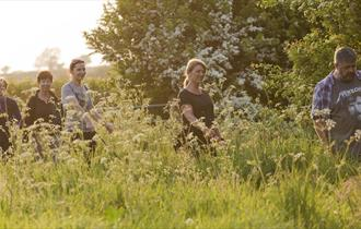 Group of walkers walking through grass.