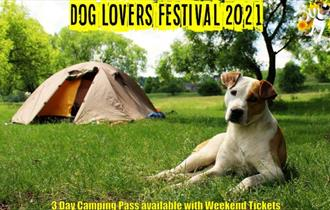 There's fun and frolics for pooches and their owners at the ultimate dog-friendly festival