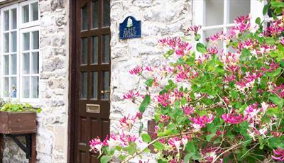 Few minutes walk away from the centre of Castleton