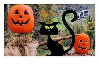 Scarecrows and a black cat at the Heights of Abraham
