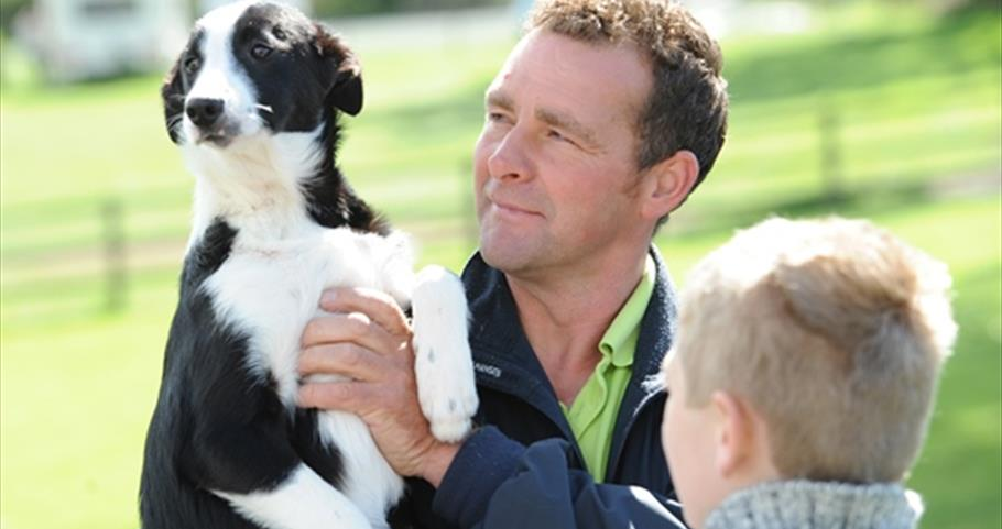 Picture of dog and man at Thornton Hall Farm