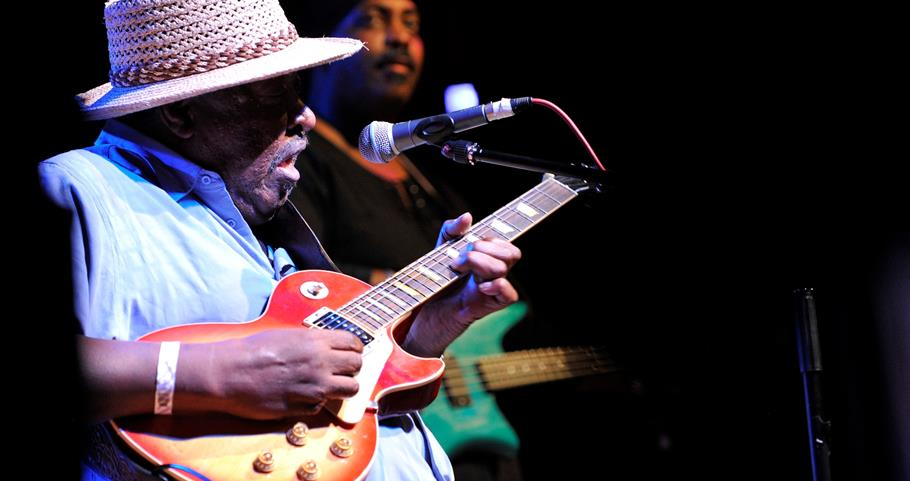 Picture of guitar player at the Blues Festival