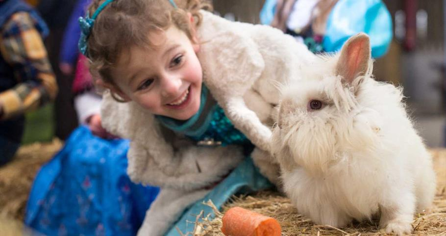 Picture of young girl and rabbit at Thornton Hall Farm
