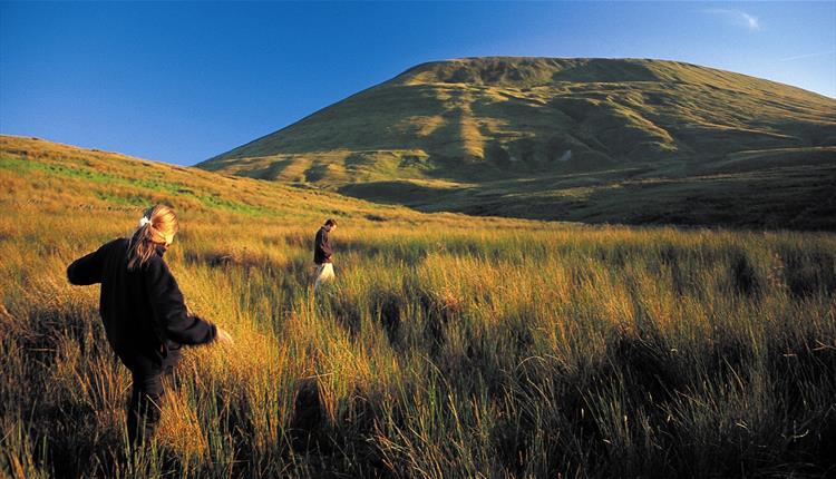 Pendle's Three Peaks
