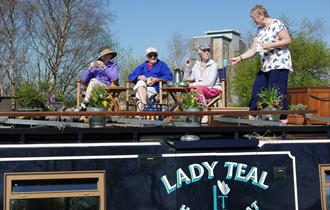 Lady Teal