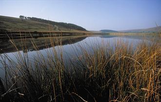 Pendle Reservoir Walks
