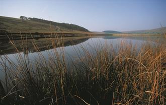 Black Moss Reservoir Walk