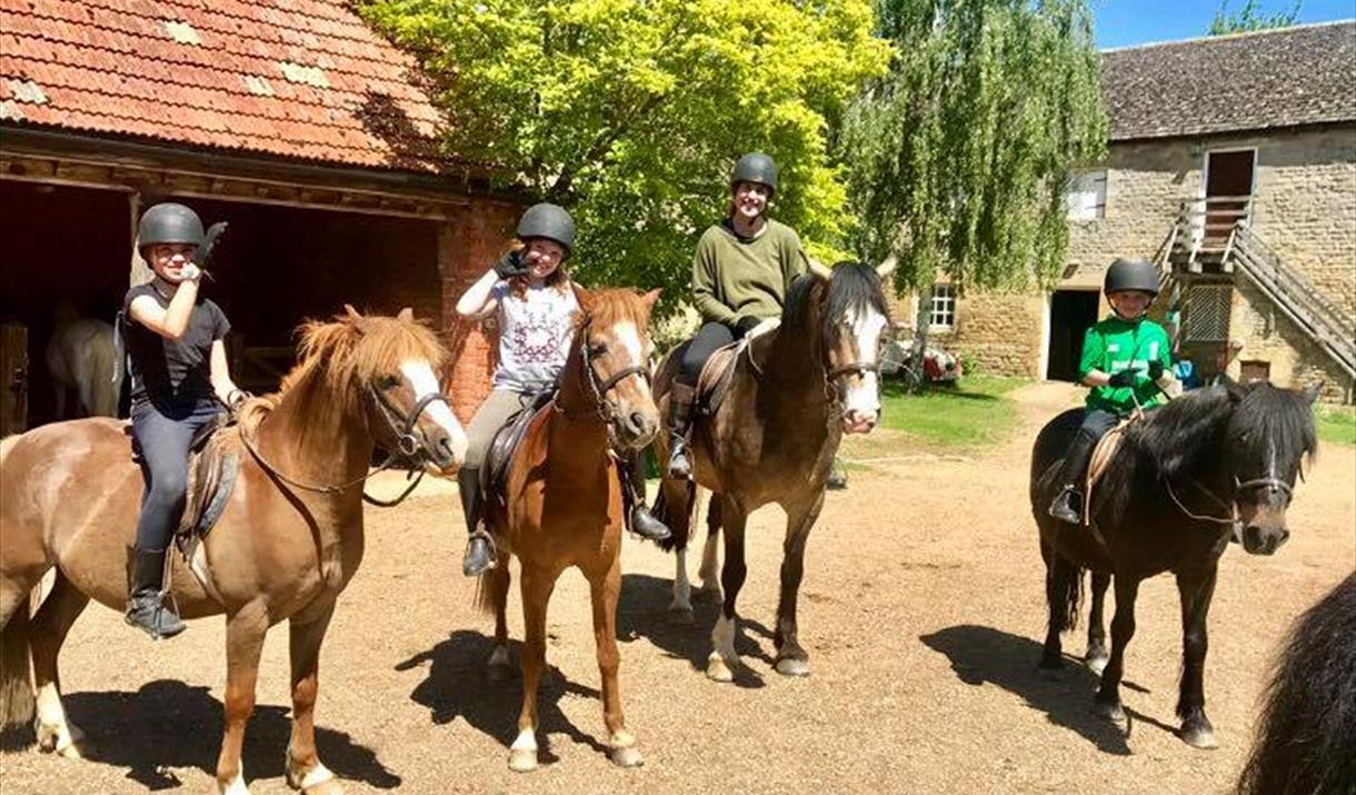 Lynch Farm Riding Ltd