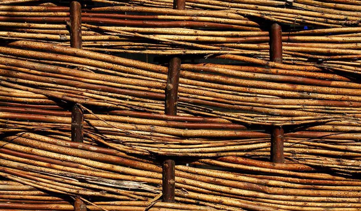Willow Weaving Stock Image