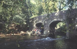 The Plym Trail, photo supplied by NTPL/Chris King