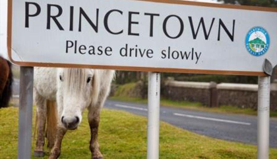 Princetown