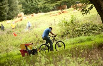 Cyclist with child trailer riding through Saltram.