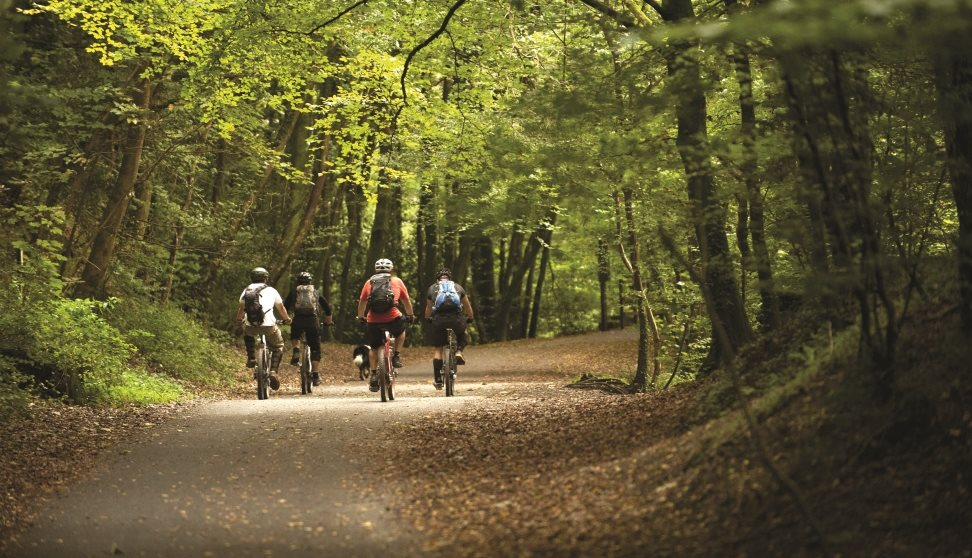 Cyclists riding through the Plym Valley.