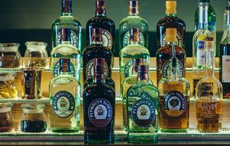 Plymouth Gin varieties