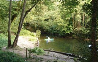 Plym Bridge Woods - National Trust
