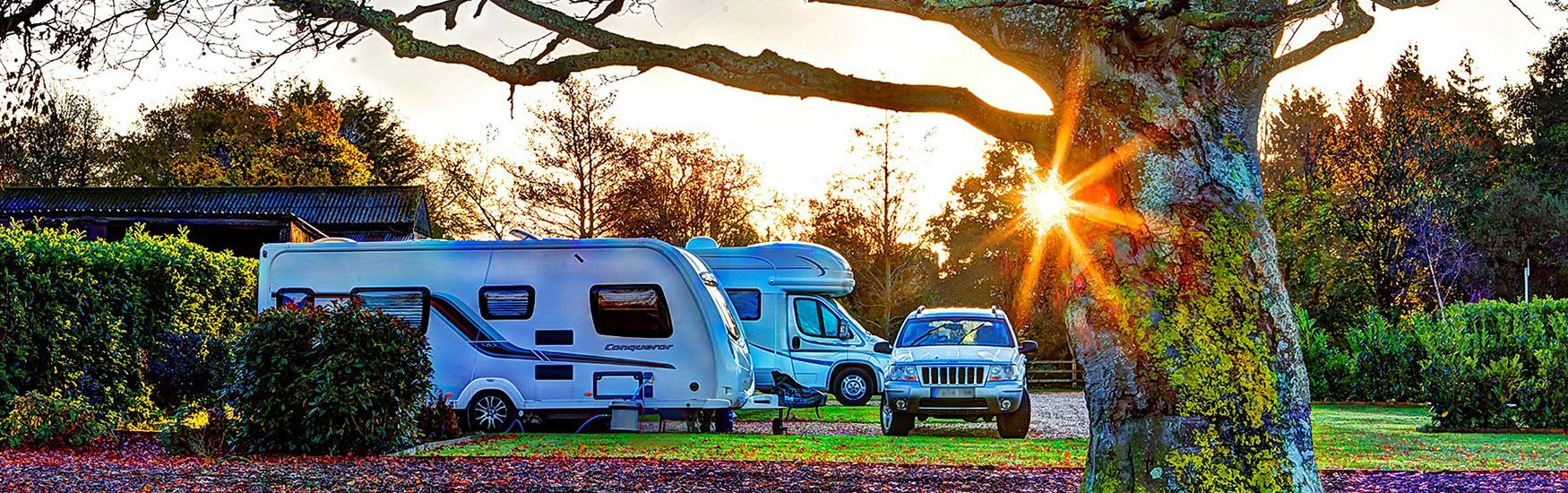 Caravans lined up in parked with the sun setting behind the trees