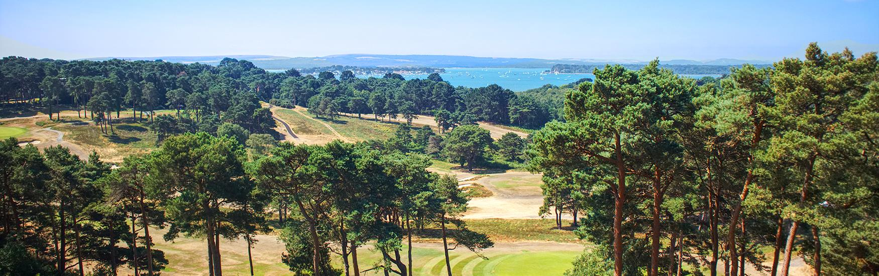 View of a green golf course with beautiful trees, grass and view of the sea with a blue sky