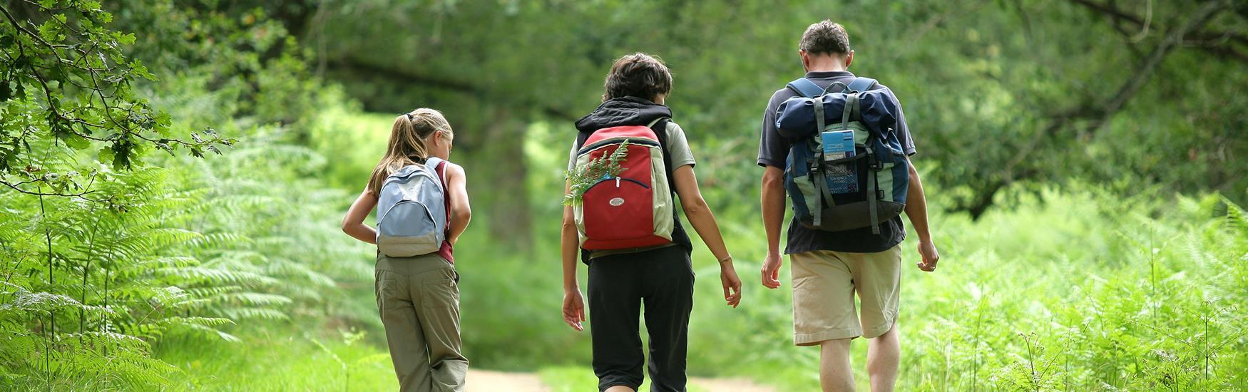 Walks & Trails